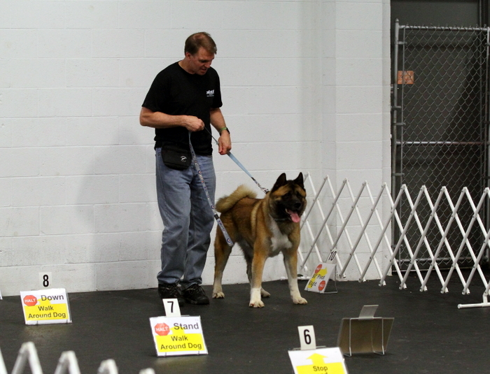 John in Rally Obedience