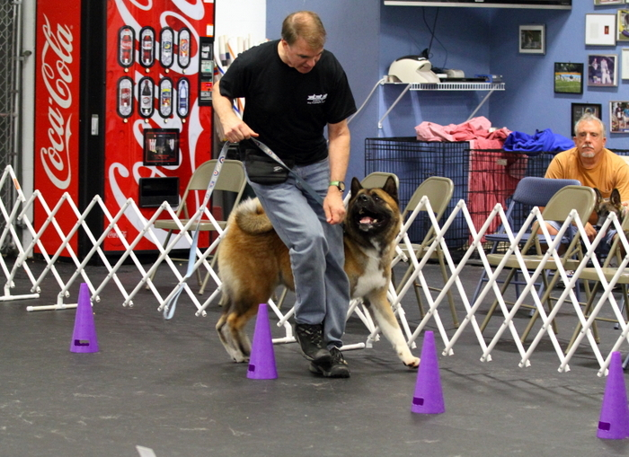 John doing Rally Obedience