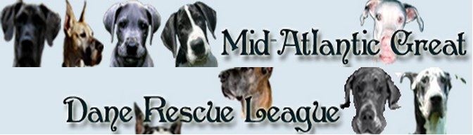 Mid Atlantic Great Date Rescue League